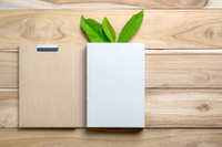 10 Best Eco-friendly Office Supplies